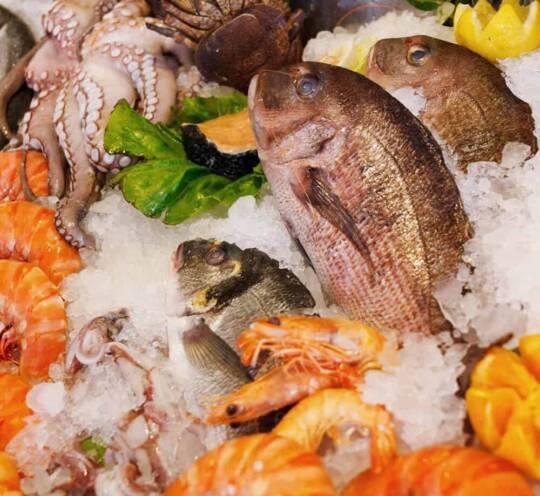 diepvries vis kopen vishandel oostende neptunus